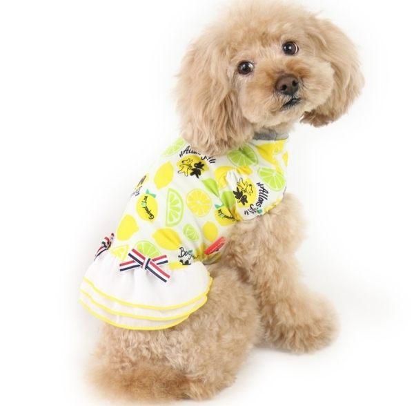 【PET PARADISE 寵物精品】Gaspard et Lisa 檸檬涼感洋裝 (SS/DS) 接觸冷感
