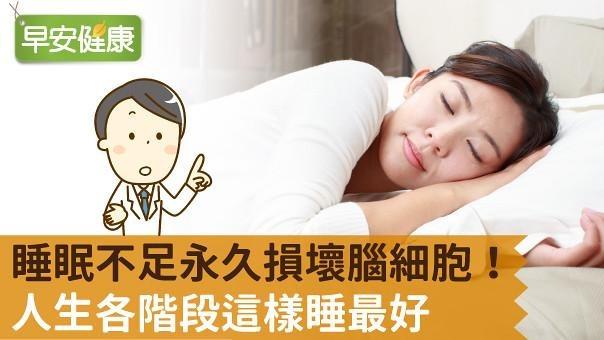 睡眠不足永久損壞腦細胞!人生各階段這樣睡最好