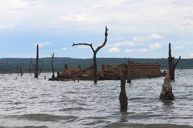 งานศิลปะธรรมชาติ'ตอไม้ผุด' รับเขื่อนลำแซะแล้งสุด21ปี