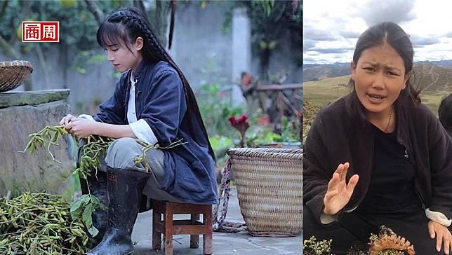 連時代雜誌都報導的中國「鄉野系」網紅!李子柒、卓瑪憑什麼爆紅全球?
