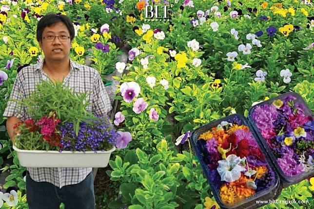 """เฟิร์ส-ชนะวัฒน์ เทียมบุญประเสริฐ เกษตรกรผู้สร้างโปรเจกต์ """"ดอกไม้กินได้"""""""