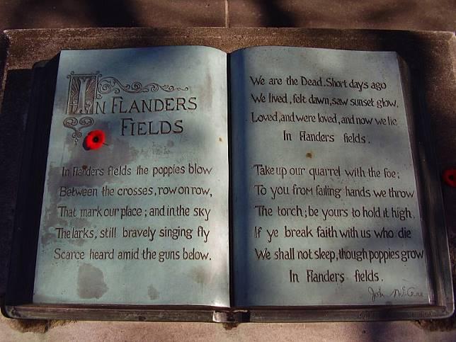 該詩的第一句,正是「在法蘭德斯戰場 虞美人迎風開放」(In Flanders fields the poppies blow)。(互聯網)