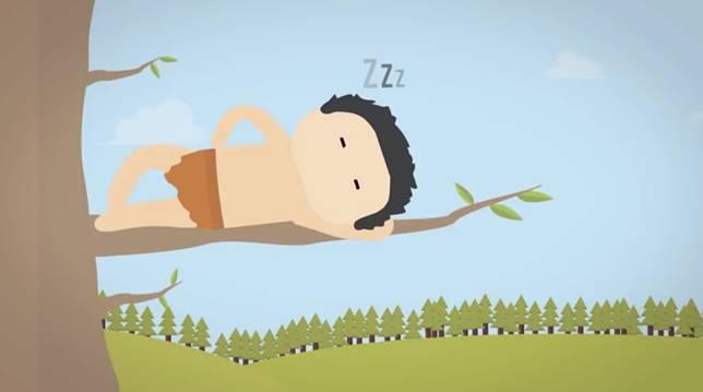 Memang siapa yang tidak suka tertidur ketika ada angin sepoi-sepoi, bisa tertidur dimana saja dan kapan saja. Termasuk di pohon. Cuma karena otak kita canggih punya gerakan refleks ini ternyata konon katanya kebawa sampai sekarang..