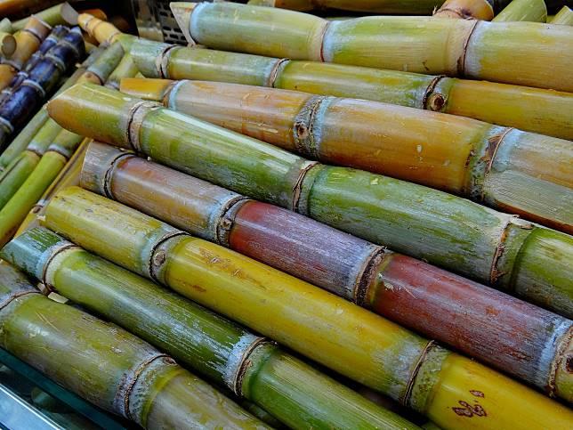 ▲甘蔗。(示意圖/翻攝自 pixabay )