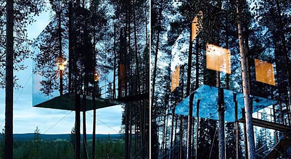 6 Rumah Pohon Paling Unik Dan Menarik Yang Ada Di Dunia Famous Id Line Today