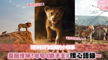 「Hakuna Matata」:滿載了童年回憶的《獅子王》,8句暖心語錄,在風雨中陪伴你成長~