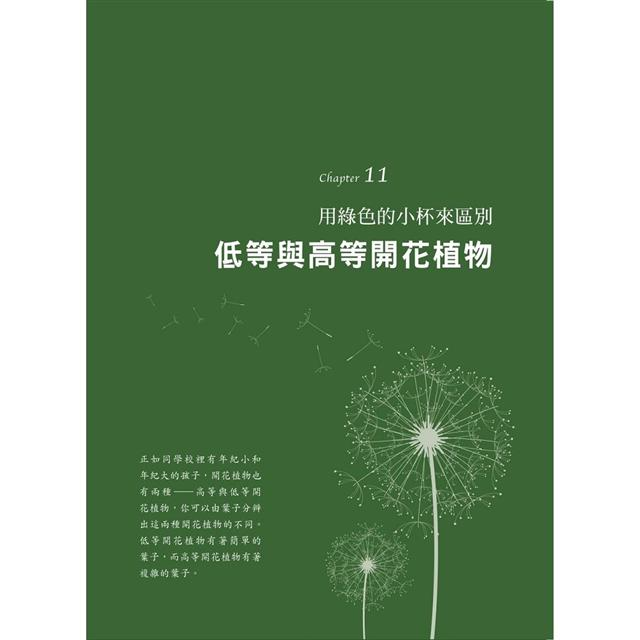 如詩般的植物課:將植物比擬孩子的成長歷程,充滿哲思、想像力的美感體驗(華德福教學引導1)