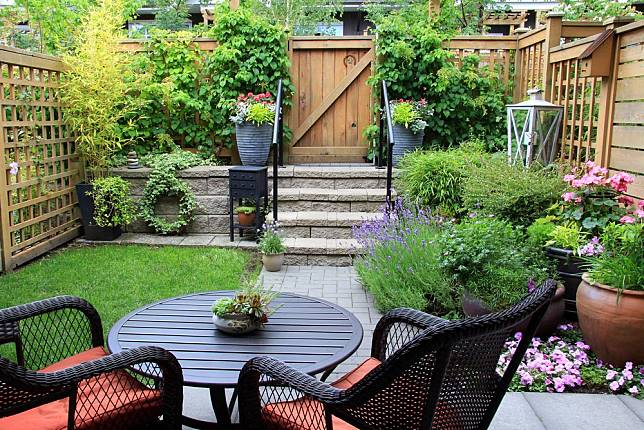 5 Taman Belakang Rumah Minimalis Impian Khusus Lahan Sempit