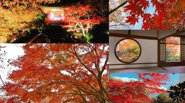 《日本vs韓國》首爾 / 京都 / 東京,六大絕美夢幻『賞楓景點』大公開!今年好好把握別再錯過!