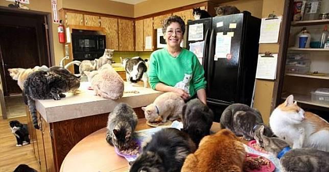 Udah Kayak Cat Queen, Nenek Ini Hidup Bersama 28.000 Kucing di Rumahnya. Ada yang Mau Adopsi?