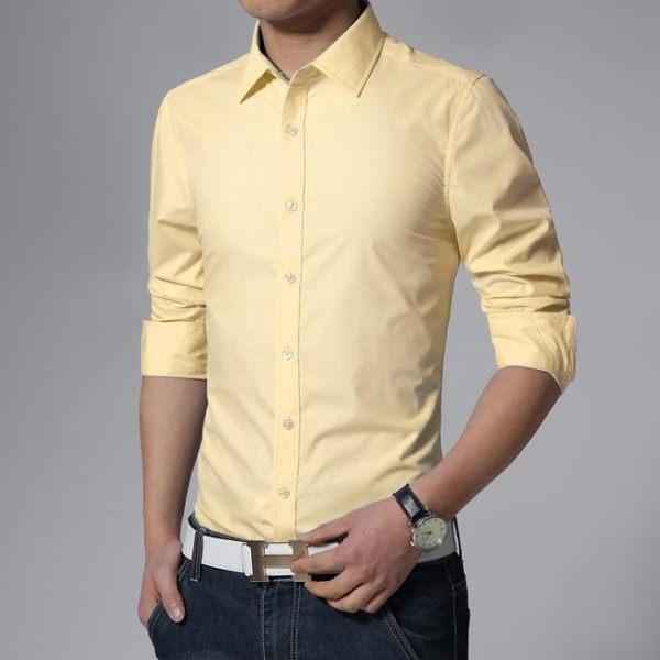 襯衫中年夏天職業裝男士襯衫長袖 薄款 夏季工作成人酒吧西褲禮服中青 coco衣巷