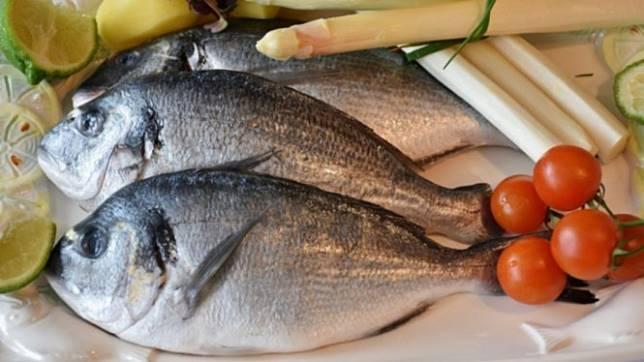 Ilustrasi ikan mentah.