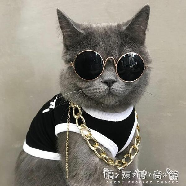 貓項圈小貓咪寵物金項錬貓咪狗狗頸脖子掛飾法斗大金錬子項圈