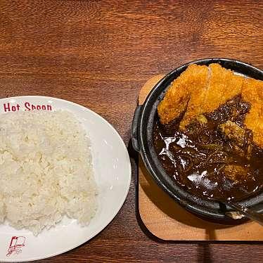 実際訪問したユーザーが直接撮影して投稿した西新宿カレーHot spoon 西新宿店の写真
