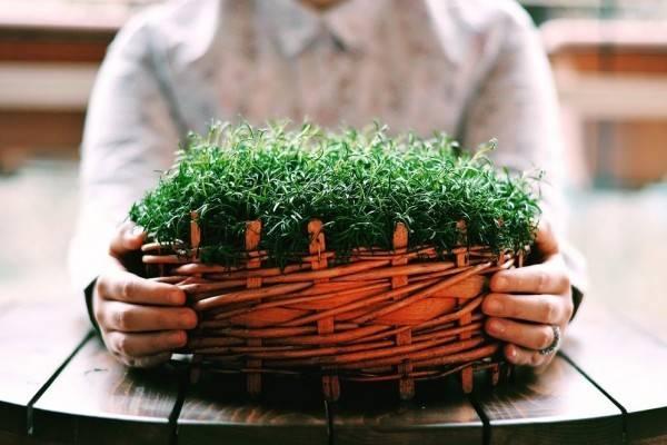 9 Manfaat Kesehatan Ini Bisa Kamu Dapatkan dari Berkebun Lho!