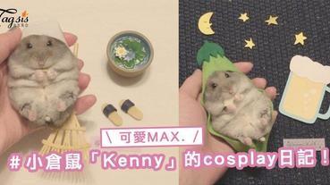 日本「Cosplay」小倉鼠Kenny就知道賣萌,一定能融化SIS你的心〜