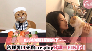 貓奴必追IG網紅貓咪~超萌模樣讓人受不了,喵星人化身「壽司店師傅」準備上菜啦!