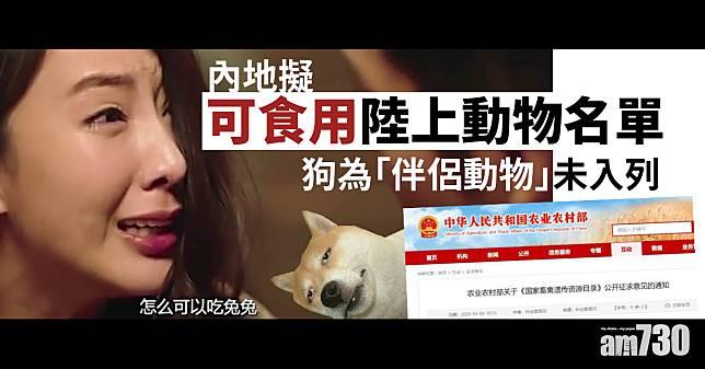 【新冠肺炎】內地擬可食用陸上動物名單 狗為「伴侶動物」未入列