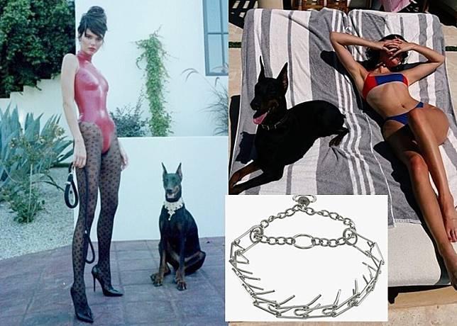 Kendall用呢款狗頸圈,即被網民批評!