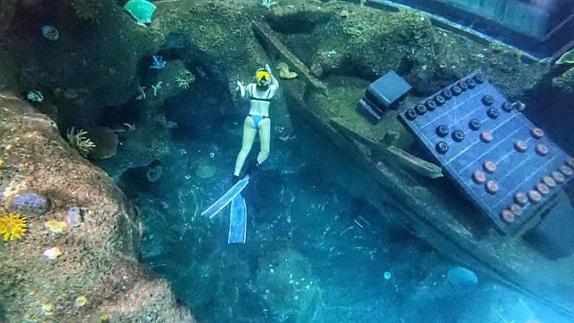 呢個潛水缸不得了!