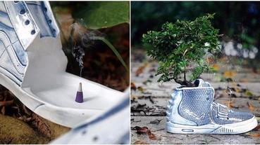球鞋藝術再升級!YEEZY 造型的陶瓷盆栽你肯定沒見過