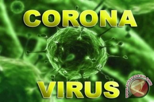 China laporkan 17 kasus lagi terkait virus Korona