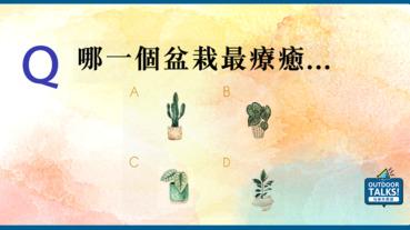 【玩樂心測】選擇一盆最療癒的盆栽 神準分析為什麼你對生活這麼無力!