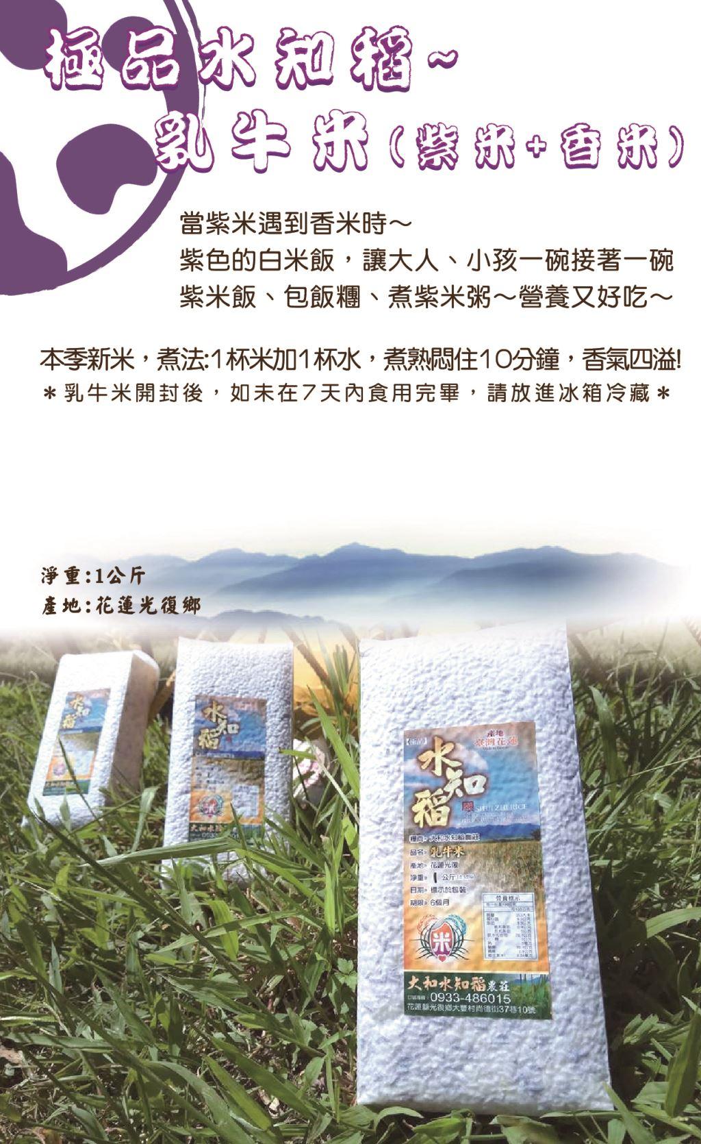 極品水知稻 - 乳牛米 | 花東米 | 東部好米 | 乳牛米 | 紫米 | 香米 | 白米 | 米 | 花蓮名產 | 花蓮特產 |【特色產品】