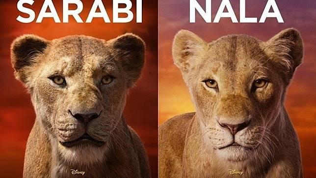有人睇過預告後,發現根本分不出那些獅子角色,到底那隻獅子是辛巴,那隻是娜娜?(互聯網)