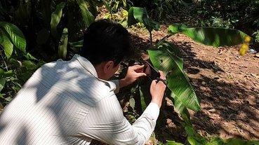 世界地球日生態攝影師施信鋒教你怎麼用iPhone拍螢火蟲