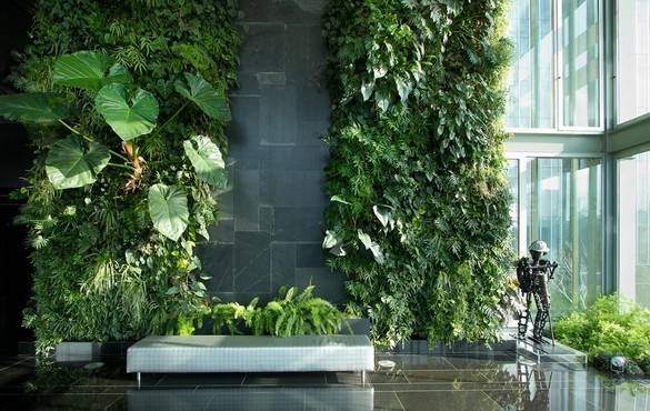 6 Taman Minimalis Dalam Rumah yang Bikin Adem!