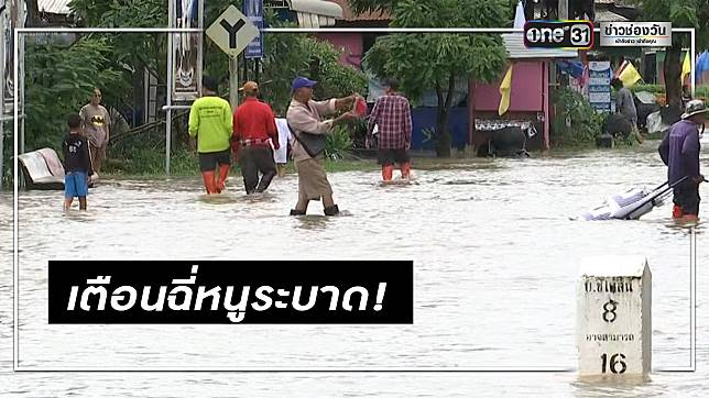 """เตือนภัยน้ำท่วมระวัง """"โรคฉี่หนู"""" ชาวบ้านตายแล้ว 16 ราย"""