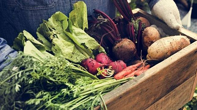 "Ilustrasi tukang sayur. [Shutterstock masih dianggap sebelah mata,""</i> ungkap @devi_lianti.</p><figure class="