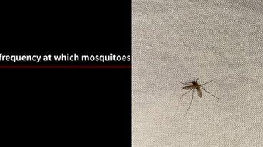 夏天殺蚊子有新招!日本網友自製 YouTube 音頻影片,播完「大蚊子咬床單」即死!