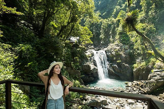 台灣山林之美盡在林務局「Trip森林 揪好森」主題館! 情境式五感體驗超吸睛