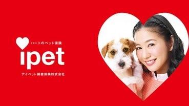 寵物保險公司引入寵物喪假制度
