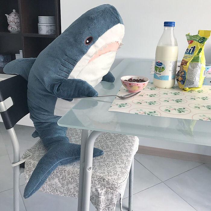 如果想探索海底世界,你可以將體型大有安全的它放在身邊, 這隻藍色鯊魚可以游得很遠、潛到很深的海裡,還能從遙遠的地方聽見你的心跳 商品尺寸 80 公分 商品材質 布料: 100%聚酯纖維 填充物: 聚酯