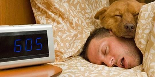 Dari Pelupa Hingga Kematian, Berikut Bahaya Kalau Kamu Tidur Terlalu Lama