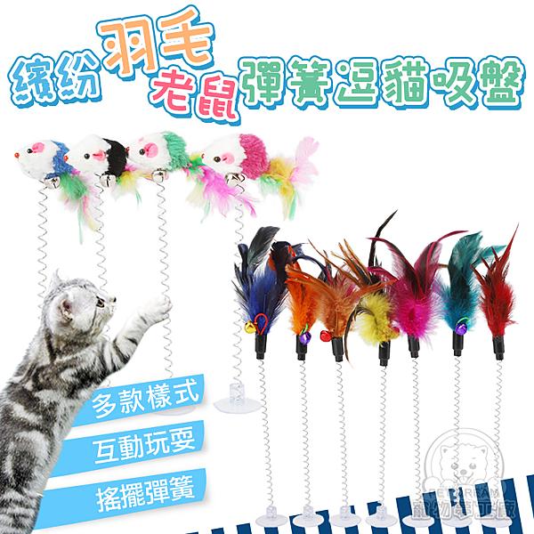 羽毛搭配鈴鈴響的鈴鐺,喚起貓主子玩耍慾望,平時不在家時,也可使用吸盤讓貓咪自己在家也能自由自在的玩耍