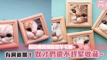 超治療貓貓造型羊毛氈~有洞就鑽!奴才們還不趕緊收藏~有你家主子的樣子嗎?