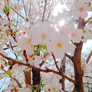 18-03-29-11-37-50-999_photo.jpg