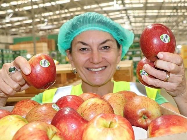 Bostock New Zealand的供應經理Heidi Stiefel展示可堆肥PLU蘋果貼紙。(圖片來源:stuff.co.nz)