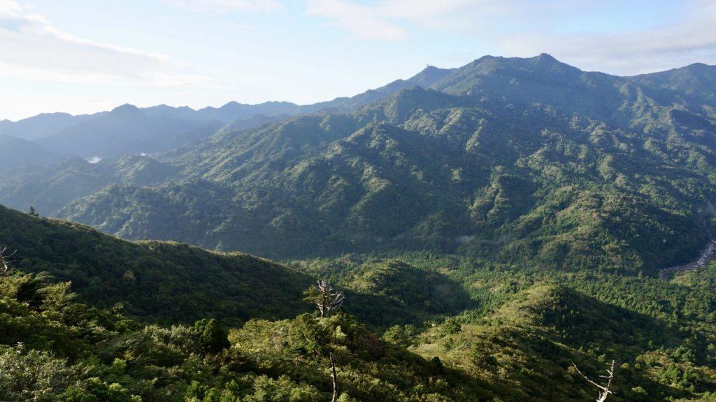 夏天就到屋久島享受神秘大自然!一窺世界遺產精選景點 3
