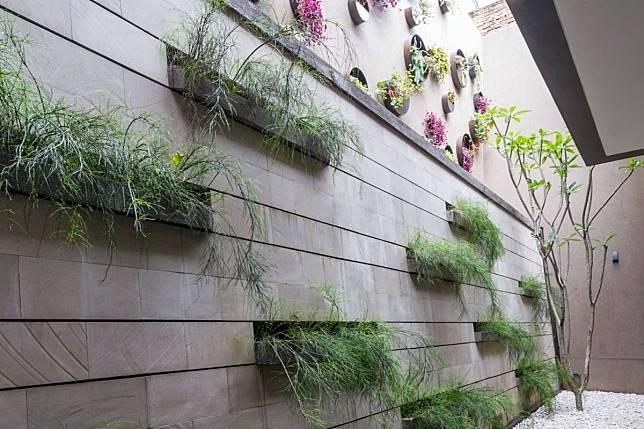 8 Inspirasi Desain Taman Kecil Di Belakang Atau Samping Rumah
