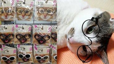 顏值度飆高!日本大創推出「寵物用眼鏡」,貓咪一秒變身「俊美文青」萌翻眾人!