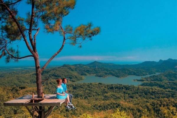 5 Objek Wisata Hutan yang Hits dan Instagramable di Jogja