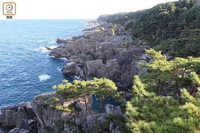 從展望台可眺望侍濱海岸的斷崖及礁石地帶。(劉達衡攝)