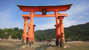 日本導遊的請求:不要再插硬幣在大鳥居!