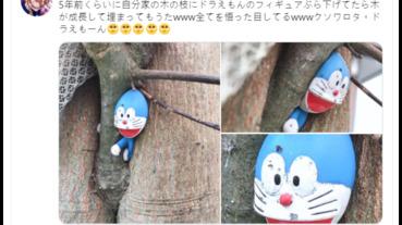 掛在院子裡的哆啦A夢玩偶,5年過去然後呢…然後它就扁掉了