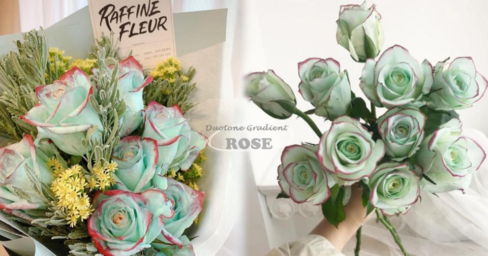 介紹過滿天星、兔尾草等夢幻花束,但經典玫瑰還是真理!